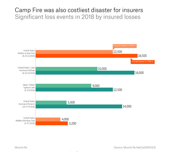 Camp Fire Losses