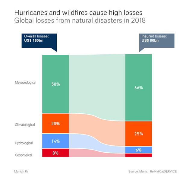 Hurricanes and Wildfires losses
