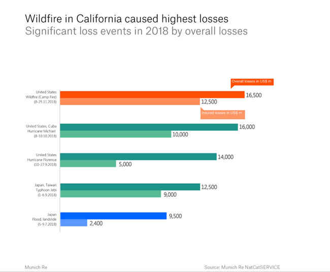 Wildfire in CA losses